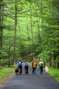 Going along the appalachian trail (AT).