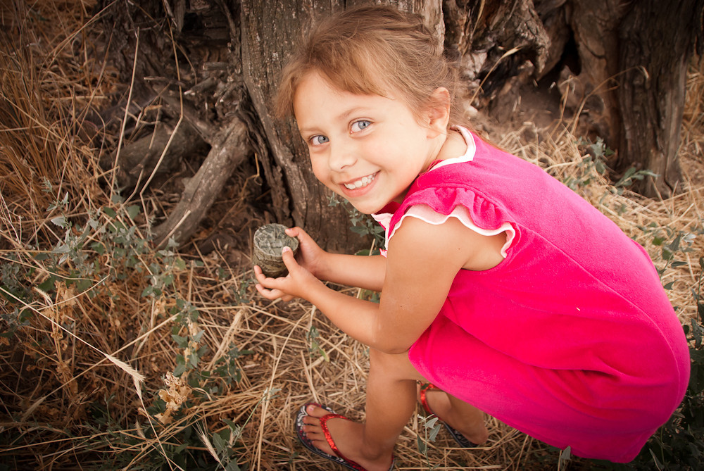 Dave's 1000th Found Cache - Spanish Fork 8/8/12