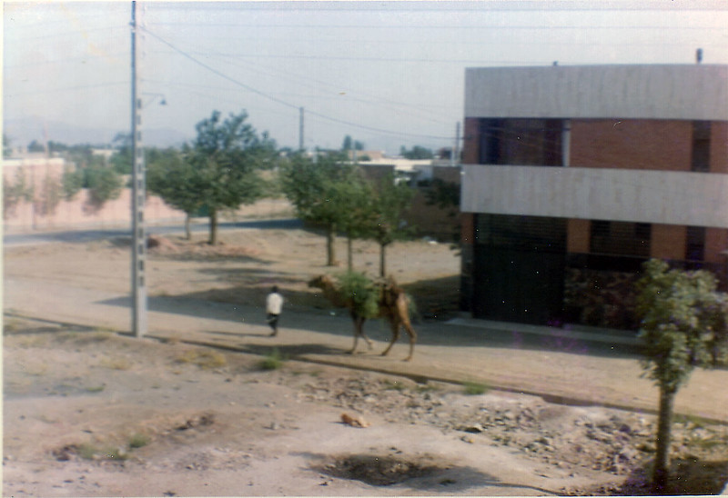 Iran-33