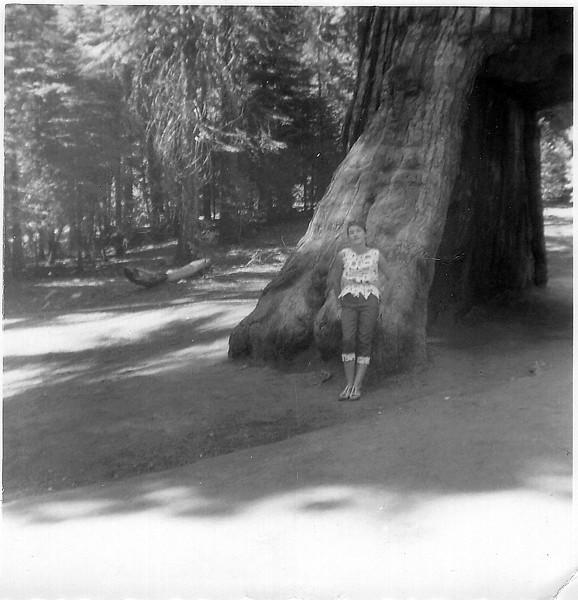 Yosemite 57-4