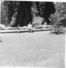Yosemite 57-5a
