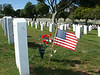 Military cemetery, San Diego, Memorial Day.