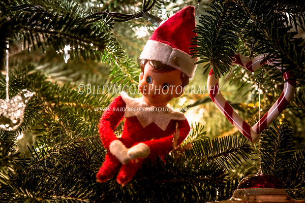 Family Christmas Gift Exchange - 25 Dec 2013