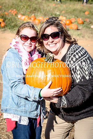 Pumpkins at Gaver Farm - 19 Oct 2014