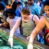 National Acqarium in Baltimore 2016