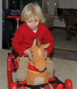 Ride um cowboy!