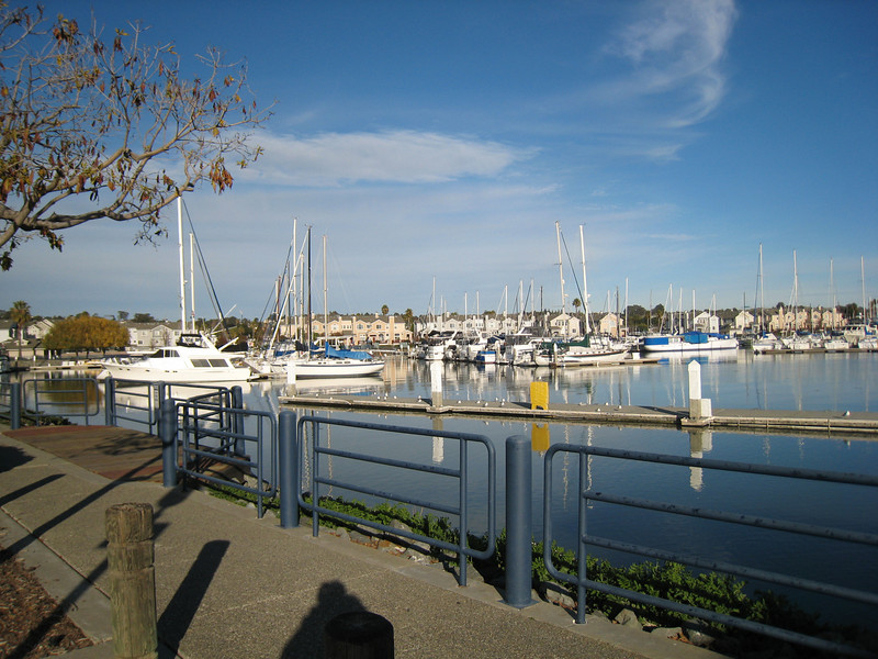 The marina with glass-like water.