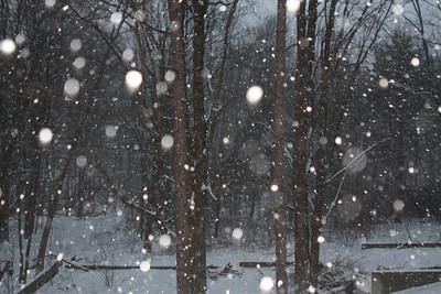 Holidays & Snowstorms 2008