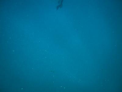 LDP_Cabo2015_Trip-44-2
