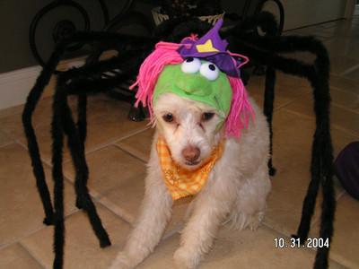 Halloween_2004_040