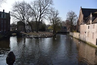 Bruges April 2016 020