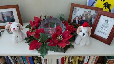 Christmas Decoration  2015