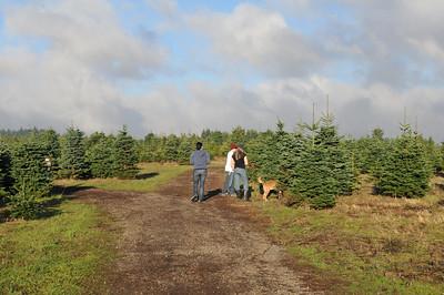 Christmas Tree Hunting - 2010