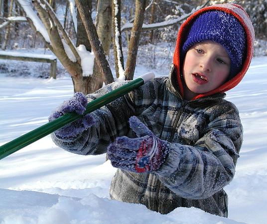 03011604_January_Snow