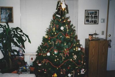 Christmas 1993?