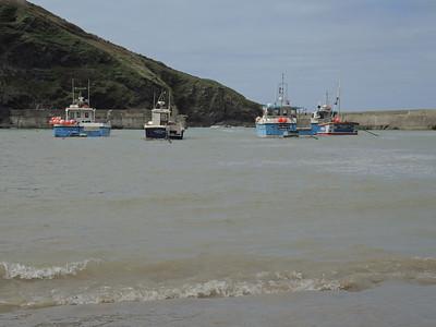 Cornwall, Apr 2014 029
