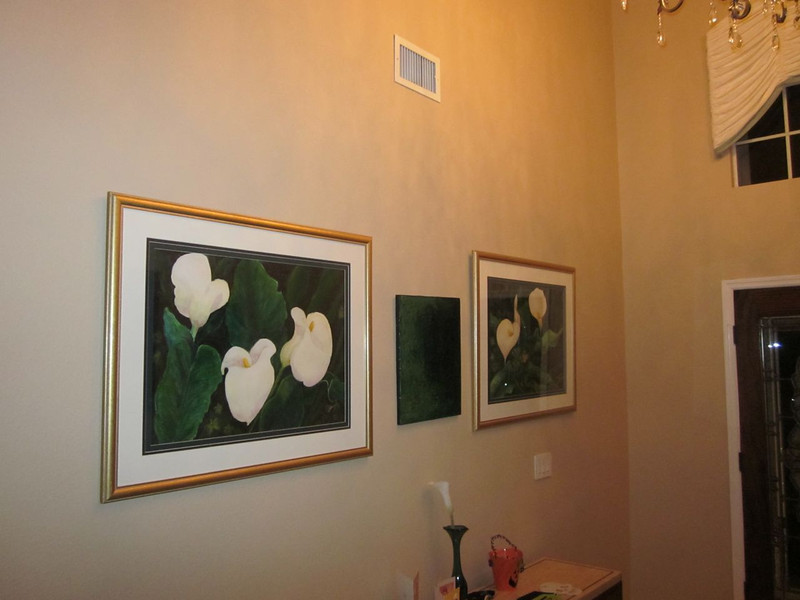 Paintings by mom & me (combo effort) in front entrance hall