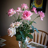 Despite total neglect on our part, some roses still bloom and smell fantastic !