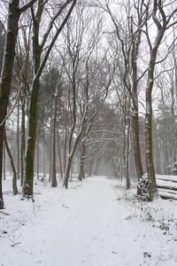 Winter in Drevenack