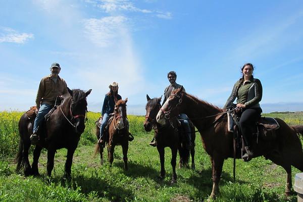 Horse Ride 5 Brooks