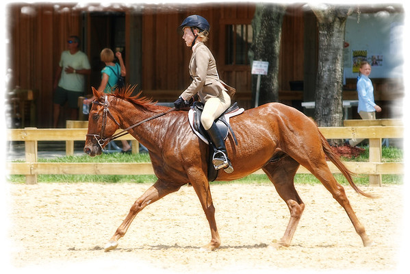 2012 Horse Events