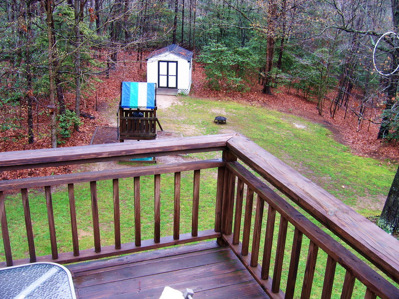 Another view of the backyard from the deck.  Note the large tree to the right and the abandoned hula hoop.