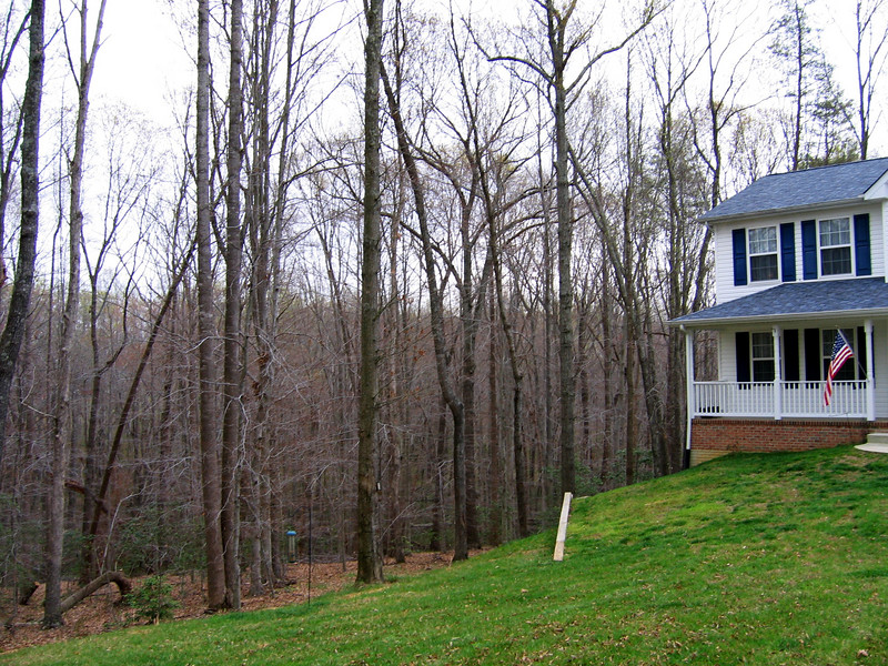 The land to the left slopes downward into the forest.  There is a lot of stand off from the house to the edge of the woods.  It is on a well and septic system.