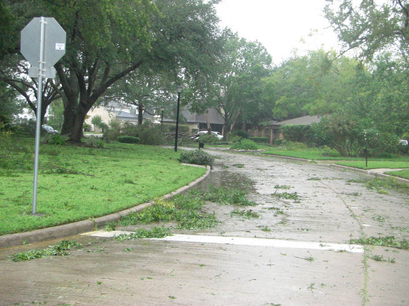 Looking up Chevy Chase toward the Club House.  Look at tree down blocking road.