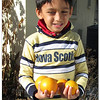 Peyton picked some oranges at Lori and Joe's house on the way home