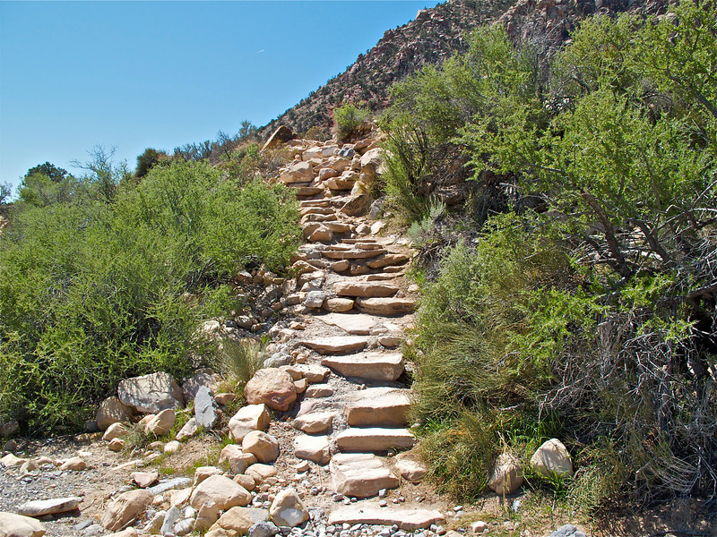 Steps out of the wash that lead to Ice Box Canyon.