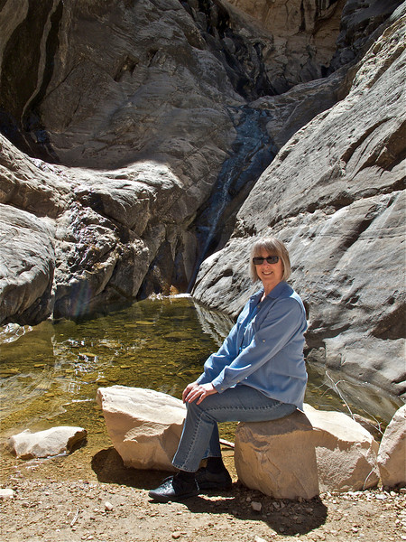 Pam at the waterfall at the end of Ice Box Canyon.