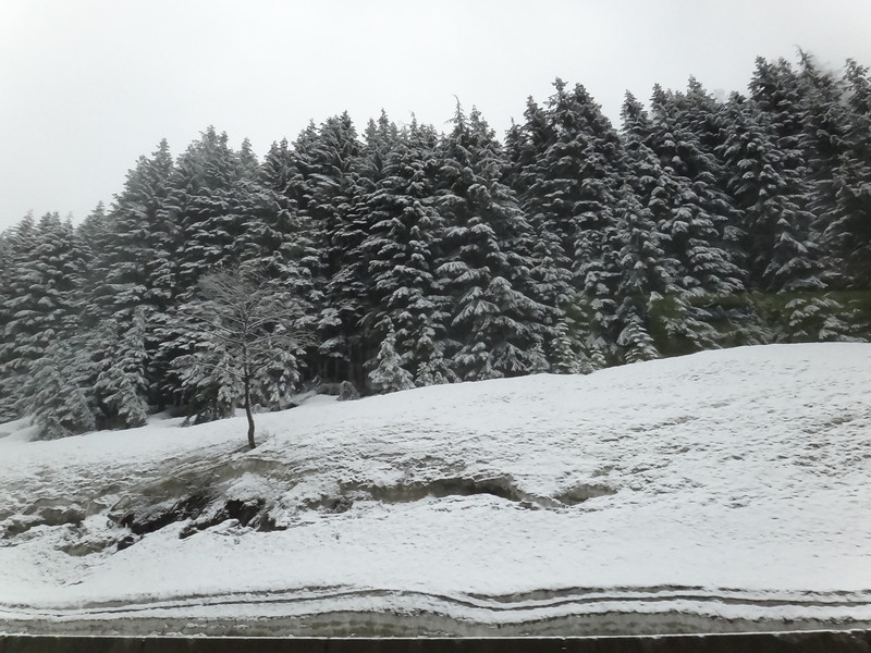 Snoqualmie Pass 5/2/12