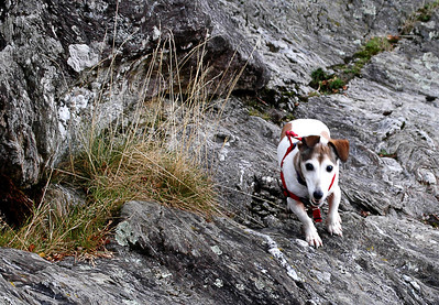 Eric on the rocks at Loch Lomond