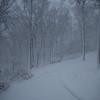 blizzard-3875