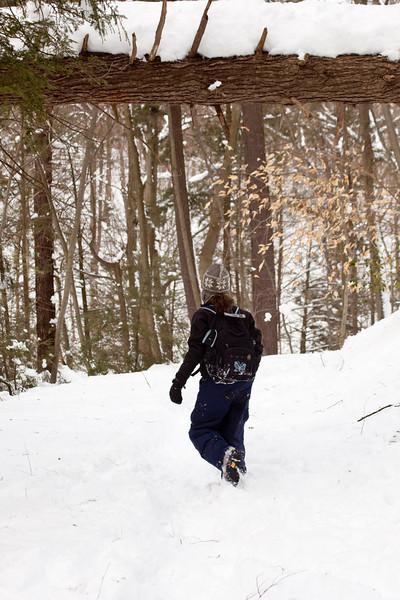 blizzard-4201