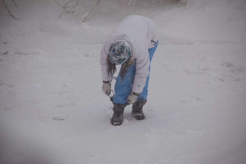 blizzard-3779