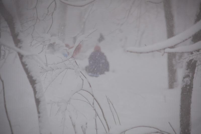 blizzard-3797