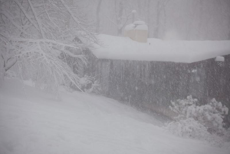 blizzard-3789