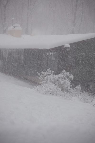blizzard-3788