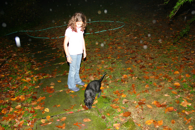 The puppy get to the house, and Anisa tries to have him pee while the rain pours down.