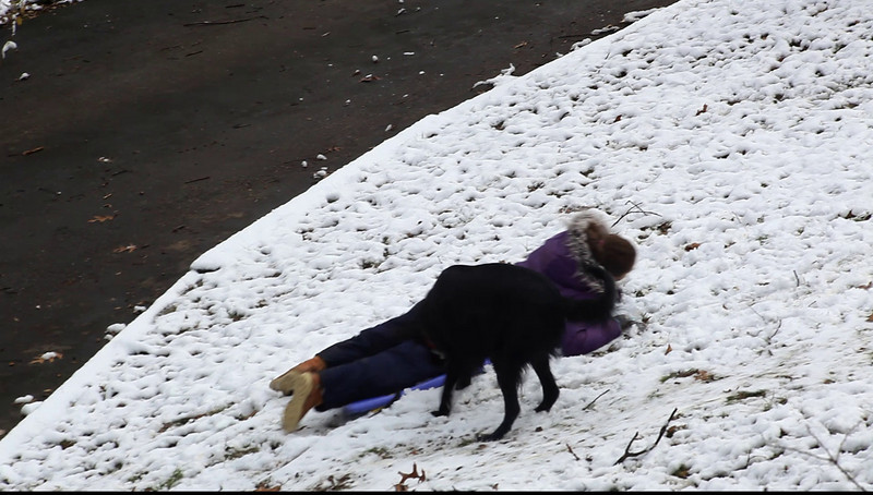 Anisa and the dog.  The annual tug of war over the sled again goes to Shadow.