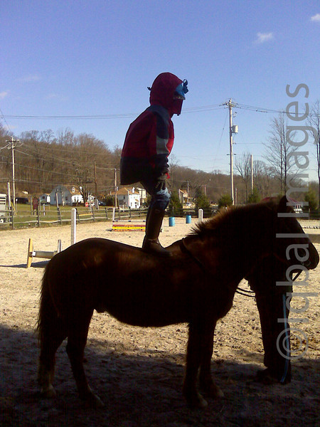 Anisa stands on her pony.  Her instructor wants her to be comfortable enough riding bareback that she can do these kinds of stunts with ease...or a backup skill in case she joins a circus.  I love it. (It was also very cold so riding bareback keeps you warm)