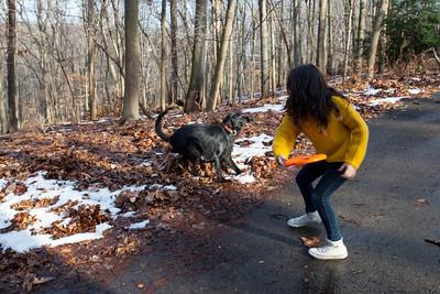 Elyze throwing a frisbee for shadow.