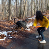 Elyze throwing a frisbee for shadow.