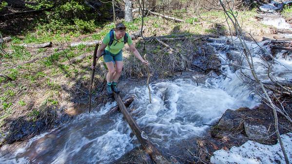 Bear Trap Fork Trail