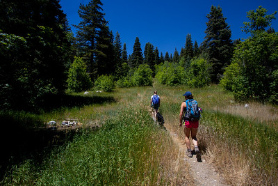 The start of the hike for Box Elder Loop up in the Uinta Mountains.  It was a 50 minute drive to get there.  We went about 7 miles and 2500 feet in elevation.  Starting from 6500 feet to almost 9000 feets.  No bugs, beatiful scenery and very pleasant.