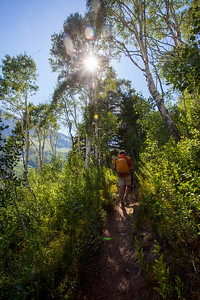 Up in the Aspen trees.  The trail was shaded in the lower portions and got less shaded as we went up. PC - Anisa