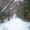 There was not too much traffic on this trail which is usually popular with sledders after a snowfall