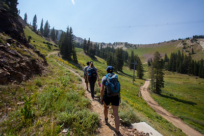 Hiking in Snowbird.  On the Peruvian Gulch.  Almost 3.5 miles and 3000 foot altitude gain.  We ended up at 11,000 feet.