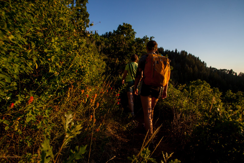 The after dinner hikes are great because you get the setting sunlight.